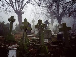 кладбище 4